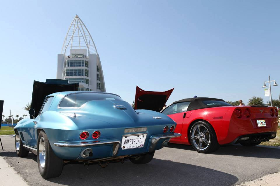 Vettes at the Port-5