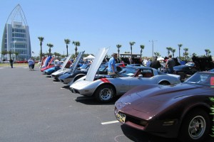 Vettes at the Port-6