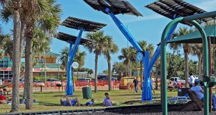 Solar Trees at Jetty Park in Port Canaveral