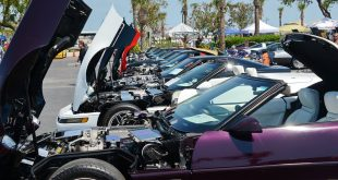 Corvette Show in Port Canaveral